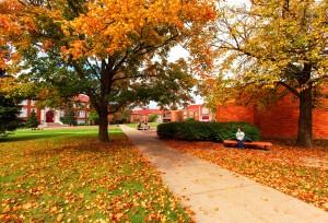 quad in fall
